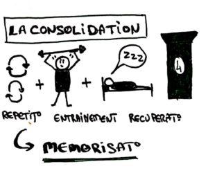 4ème pilier de l'apprentissage : la consolidation
